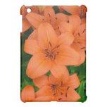 Orange daylilies iPad mini covers