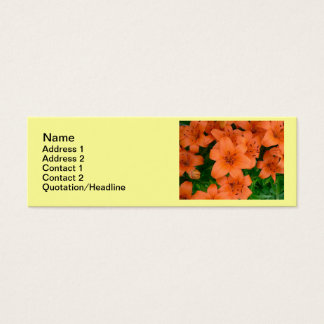 Orange daylilies skinny business cards