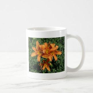 Orange Daylillies Coffee Mugs