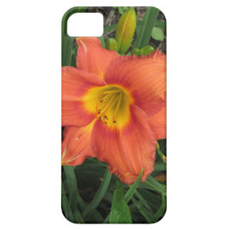 Orange Daylilly Cover iPhone 5 Case
