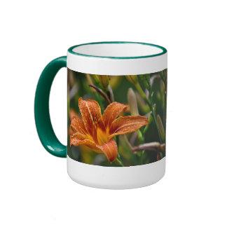 Orange Daylily & Raindrops Flower Photo Mug