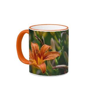 Orange Daylily & Raindrops Flower Photo Mugs