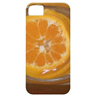 Orange Days Gifts iPhone SE/5/5s Case