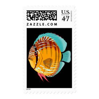 Orange Discus Postage Stamp