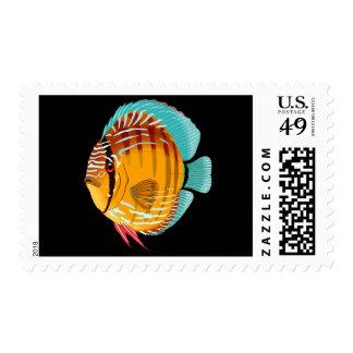 Orange Discus Stamp