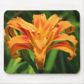 Orange Double Day Lily Mouse Pad