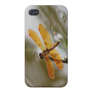 Orange Dragonfly iPhone4 case