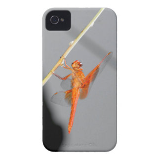 Orange Dragonfly iPhone 4 Cover