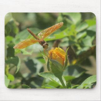 Orange Dragonfly on Yellow Rosebud Mouse Pad