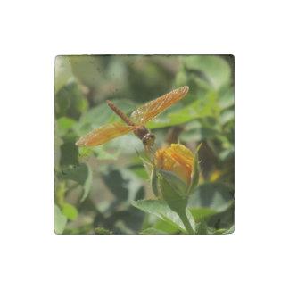 Orange Dragonfly on Yellow Rosebud Stone Magnet
