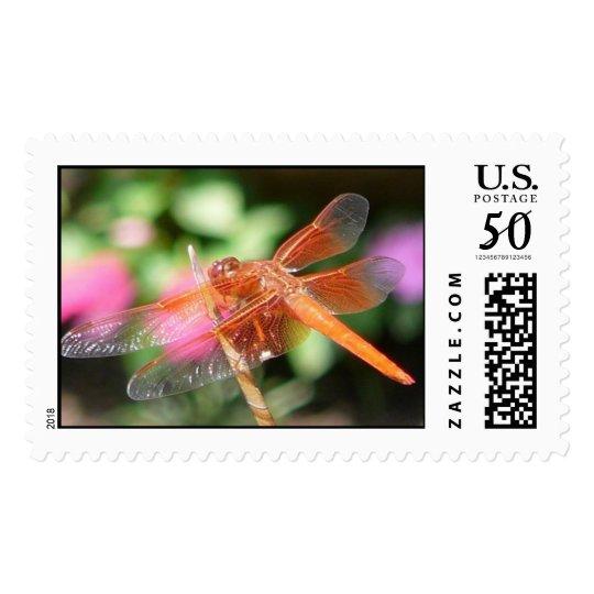Orange Dragonfly Stamp