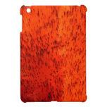 Orange Earthenware iPad Mini Cases