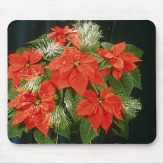 Orange Euphorbia Pulcherrima 'Dark Red' (Poinsetti Mouse Pad