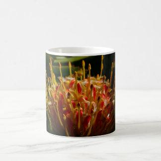 ORANGE EXOTIC CACTUS FLOWER CLASSIC WHITE COFFEE MUG
