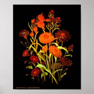 Orange Exotica 8x10 Poster