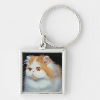 Orange Eyed and Cute Cat Keychains