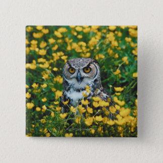 Orange Eyed Owl in Meadow of Flowers Button