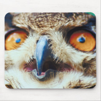 Orange Eyed Owl Mouse Pad