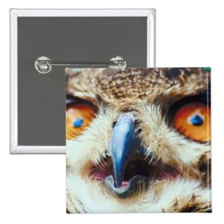 Orange Eyed Owl Pinback Button