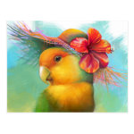 Orange-faced Lovebird with Hibiscus Hat Realistic Painting Postcard