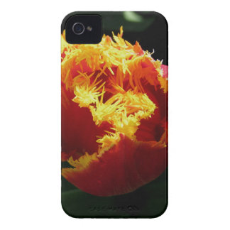 Orange Fire iPhone 4 Case-Mate Cases