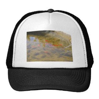 Orange Fish In The Clean Water Pond Hat