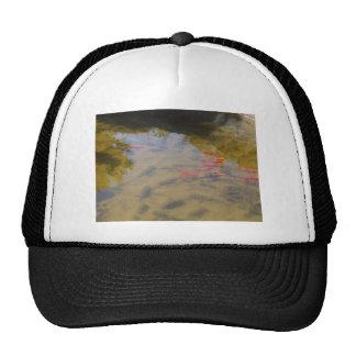 Orange Fish In The Clean Water Pond Trucker Hat