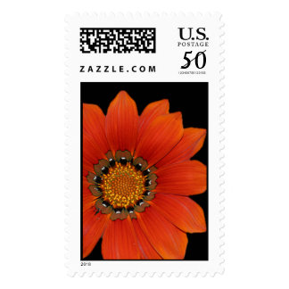 Orange Floral Large Stamp Postage