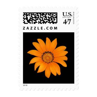 Orange Floral Stamp
