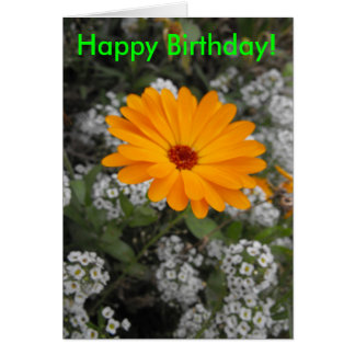 Orange Flower Birthday Card