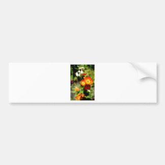 Orange Flower Bumper Sticker