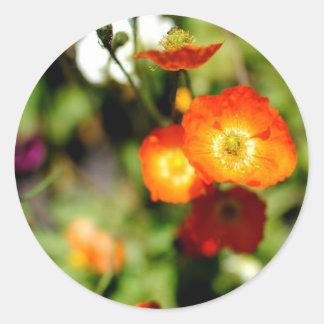 Orange Flower Classic Round Sticker