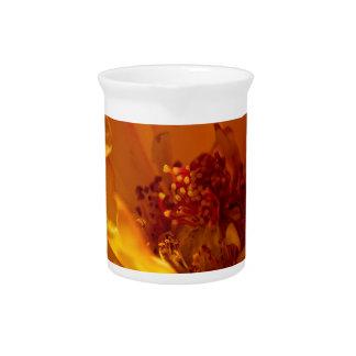 Orange Flower (Close) Beverage Pitchers