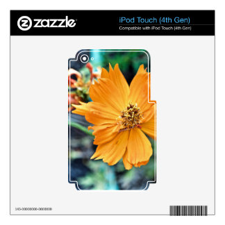 Orange Flower (Close) Decal For iPod Touch 4G