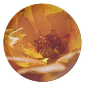 Orange Flower (Close) Dinner Plate