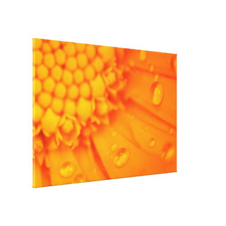 Orange Flower Close pic Gallery Wrap Canvas