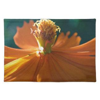 Orange Flower (Close) Placemat
