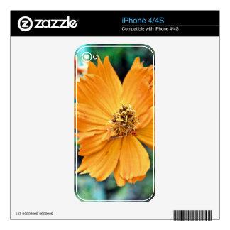 Orange Flower (Close) iPhone 4 Decals
