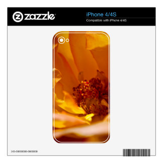 Orange Flower (Close) Skins For iPhone 4