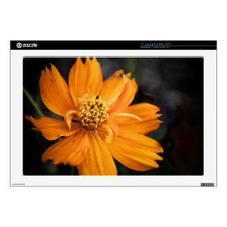 "Orange Flower (Gift) Decal For 17"" Laptop"