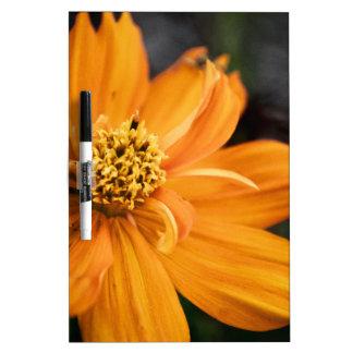 Orange Flower (Gift) Dry Erase Board
