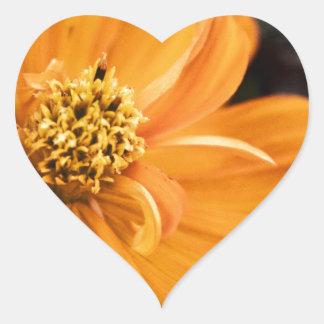 Orange Flower (Gift) Heart Sticker