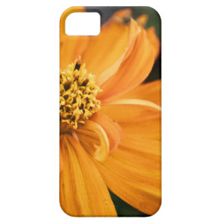 Orange Flower (Gift) iPhone SE/5/5s Case