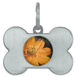 Orange Flower (Gift) Pet Name Tag