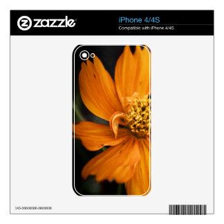 Orange Flower (Gift) Skin For The iPhone 4