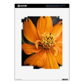 Orange Flower (Gift) Skin For iPad 3