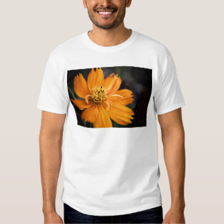 Orange Flower (Gift) T Shirts