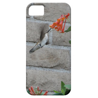 Orange flower Hummingbird iPhone 5 Cover