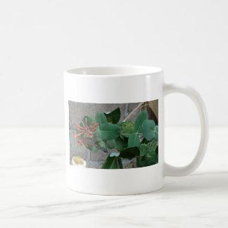 orange flower hummingbird classic white coffee mug
