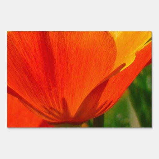 Orange Flower Iceland Poppy Papaver Nudicaule Yard Sign